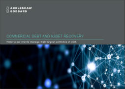 Commercial Debt and Asset Recovery brochure thumbnail image